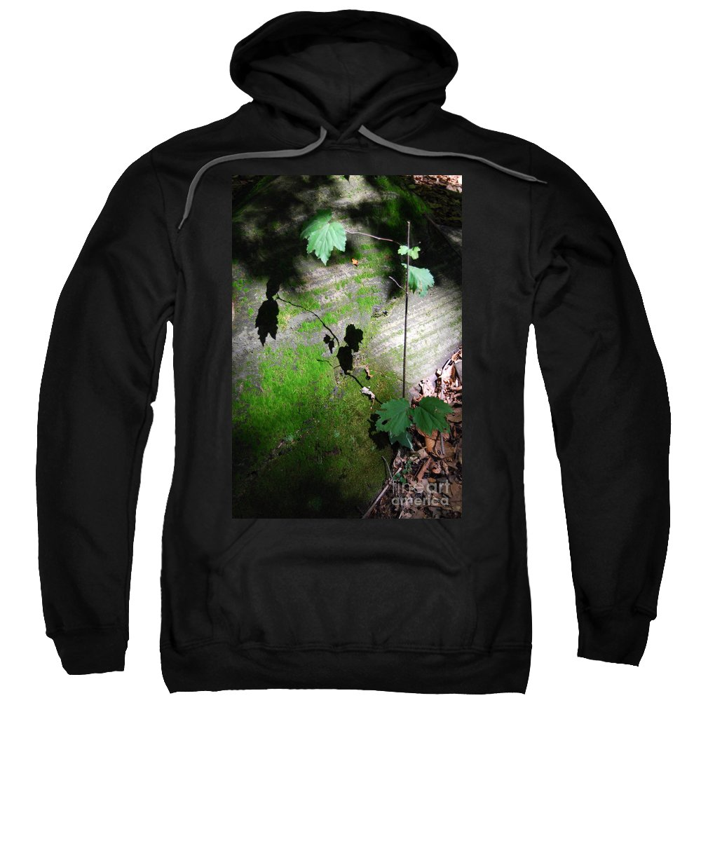 Moss Sweatshirt featuring the photograph Shadow Play by Trish Hale