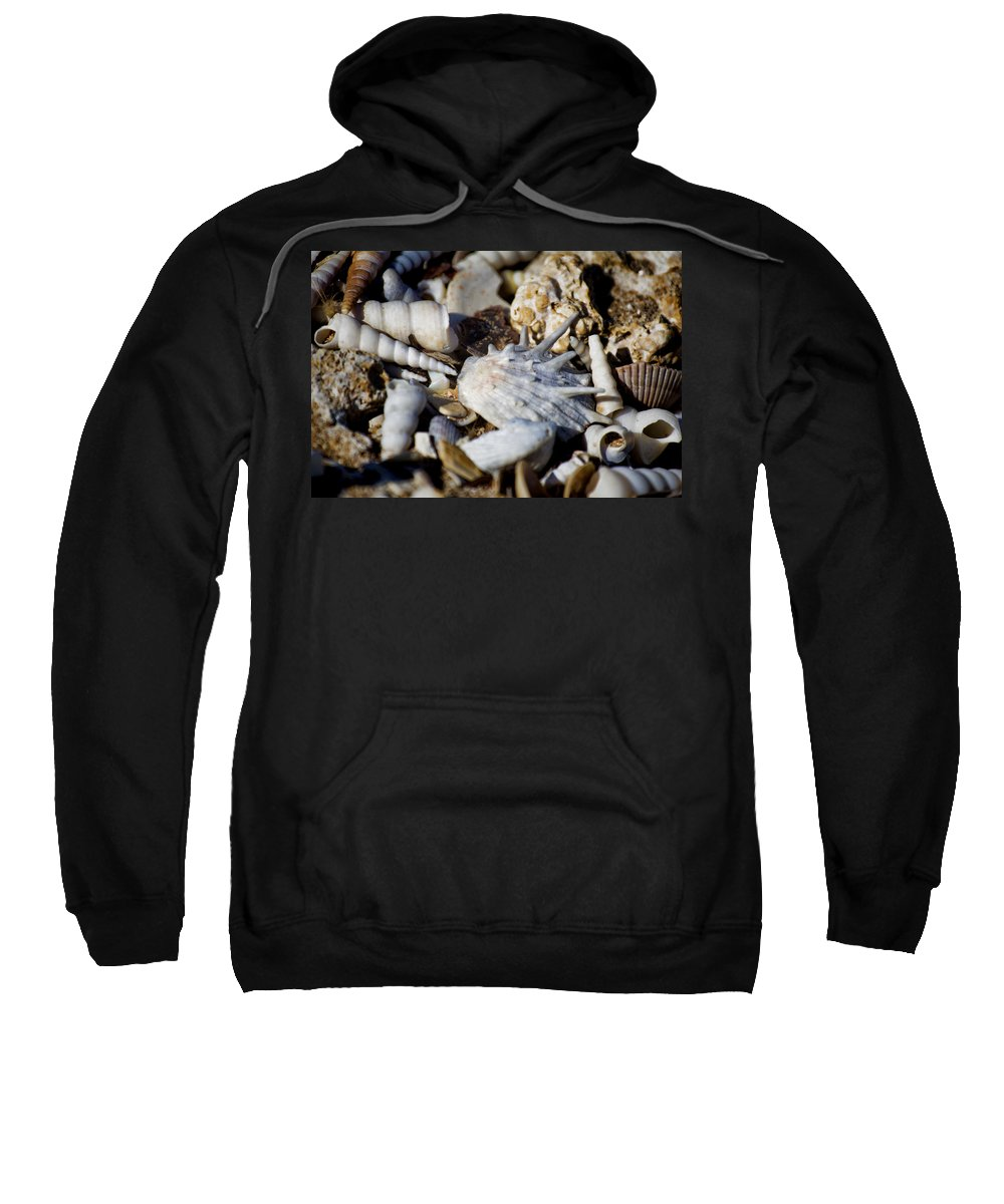 Shells Sweatshirt featuring the photograph Shelly Beach V2 by Douglas Barnard