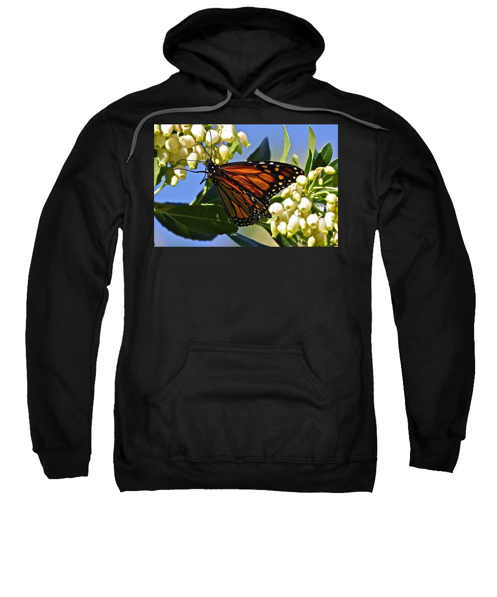 Butterfly Sweatshirt featuring the photograph Silent Beauty by Diana Hatcher
