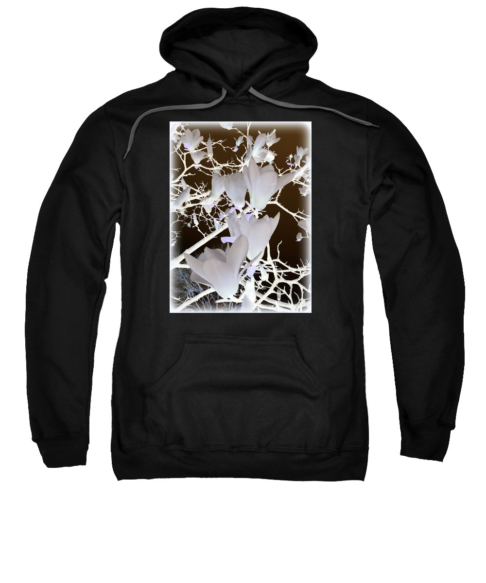 Japanese Sweatshirt featuring the photograph Silhouetted Blossoms by Carla Parris