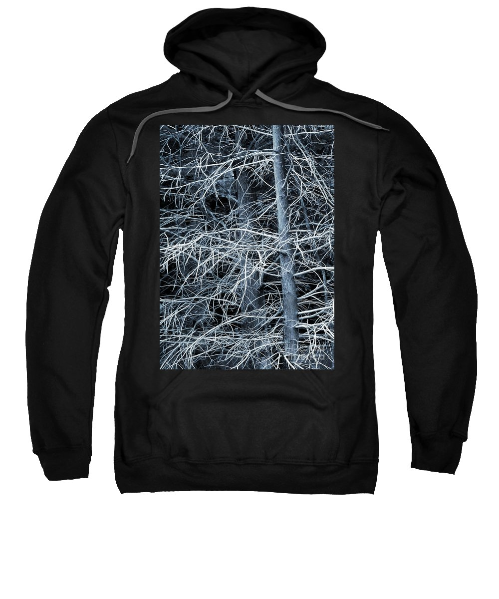 Cypress Sweatshirt featuring the photograph Skeleton Tree by Judi Bagwell