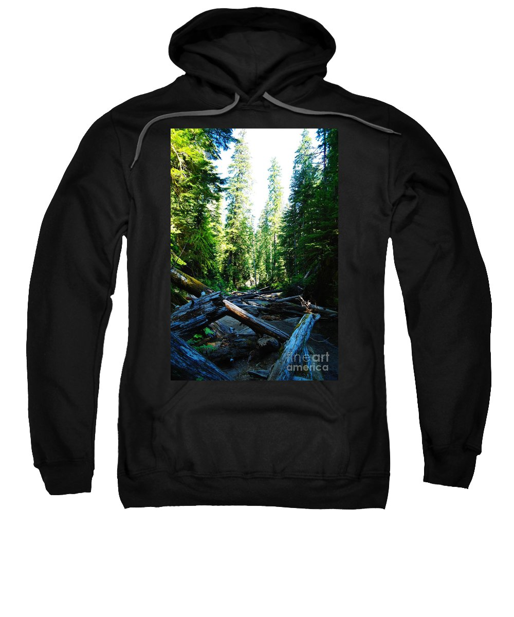 Trees Sweatshirt featuring the photograph Snag On Iron Creek by Jeff Swan
