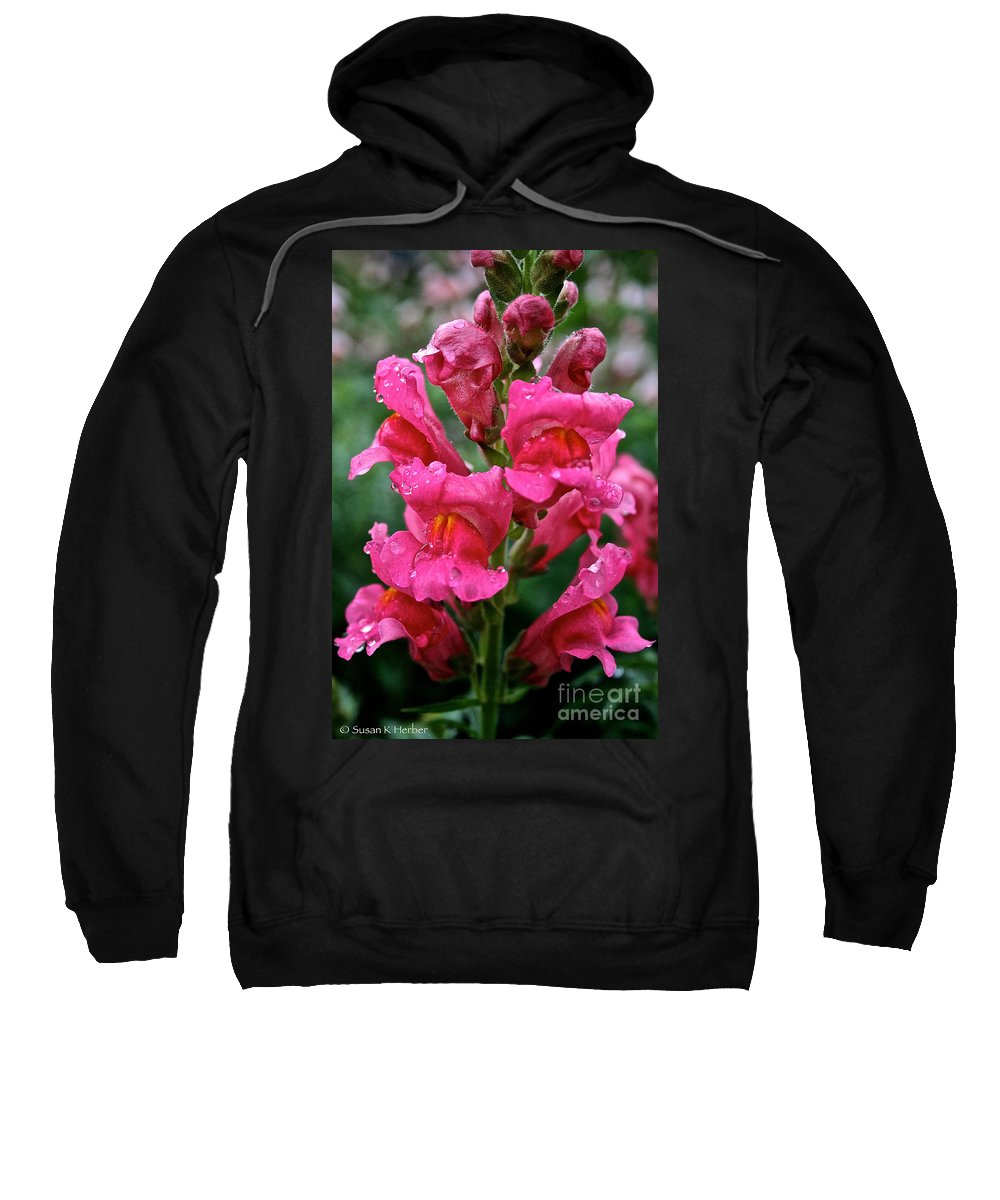 Floral Sweatshirt featuring the photograph Snapdragon by Susan Herber