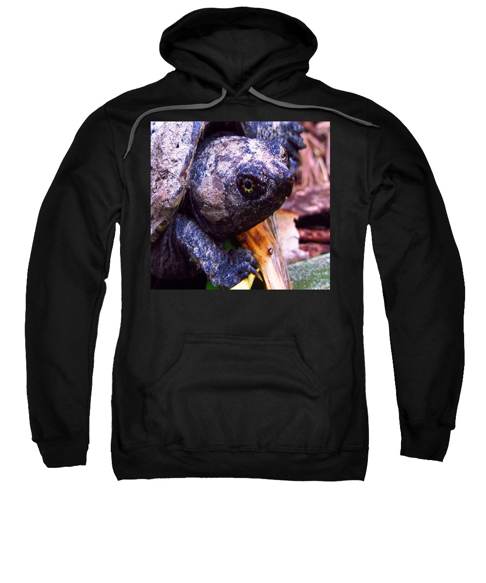 Turtle Sweatshirt featuring the photograph Snapped by Hannah Breidenbach