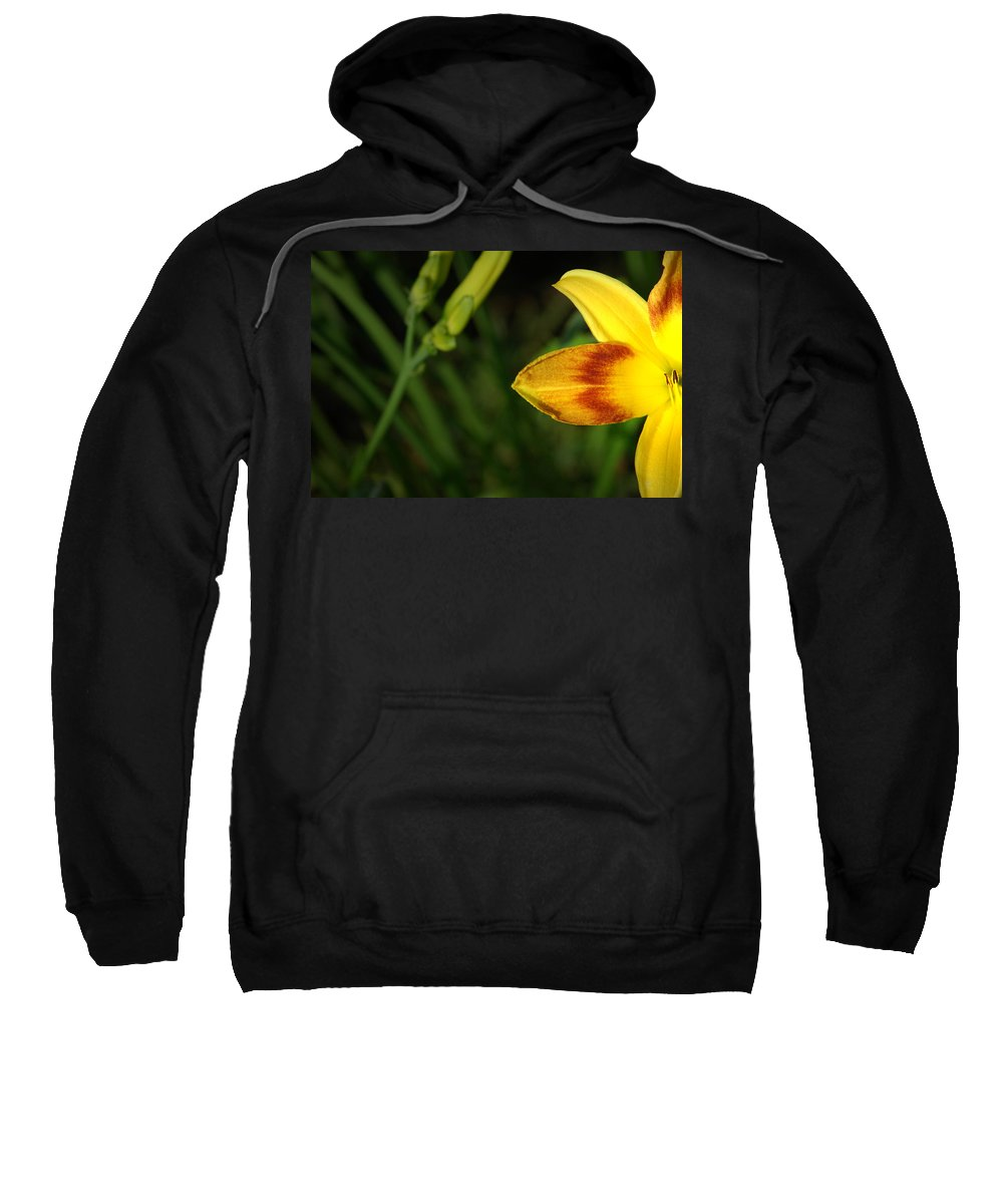 Flower Sweatshirt featuring the photograph Solar Eclipse by David Weeks