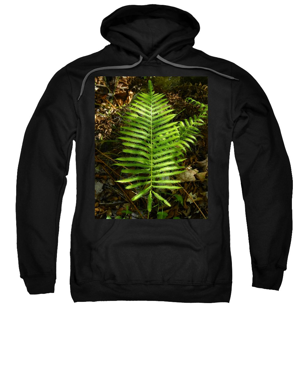 Fine Art Photography Sweatshirt featuring the photograph Southern Lady by David Lee Thompson