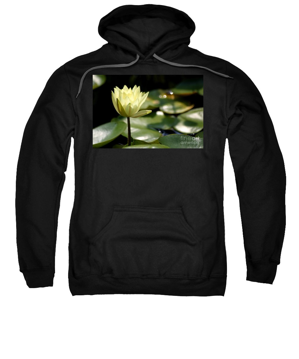 Lotus Sweatshirt featuring the photograph Sparkle by Living Color Photography Lorraine Lynch