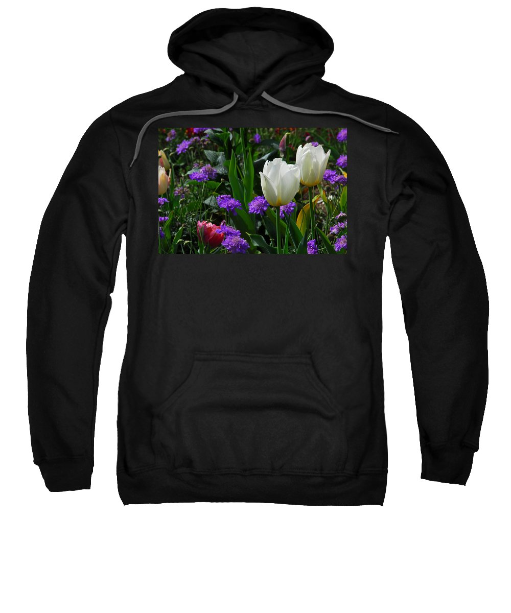 Spring Sweatshirt featuring the photograph Spring Garden by Lynn Bauer