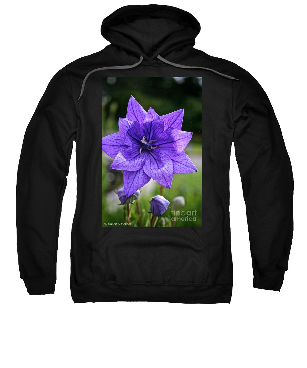 Floral Sweatshirt featuring the photograph Star Balloon Flower by Susan Herber