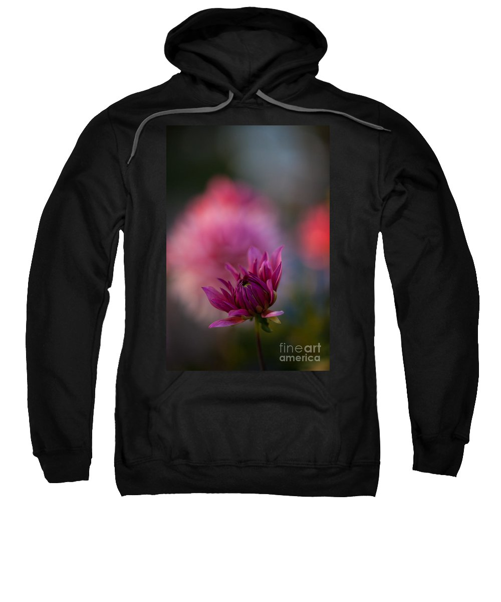 Dahlia Sweatshirt featuring the photograph Starting Anew by Mike Reid