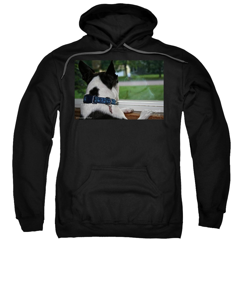 Animal Sweatshirt featuring the photograph Summer Reflection by Susan Herber