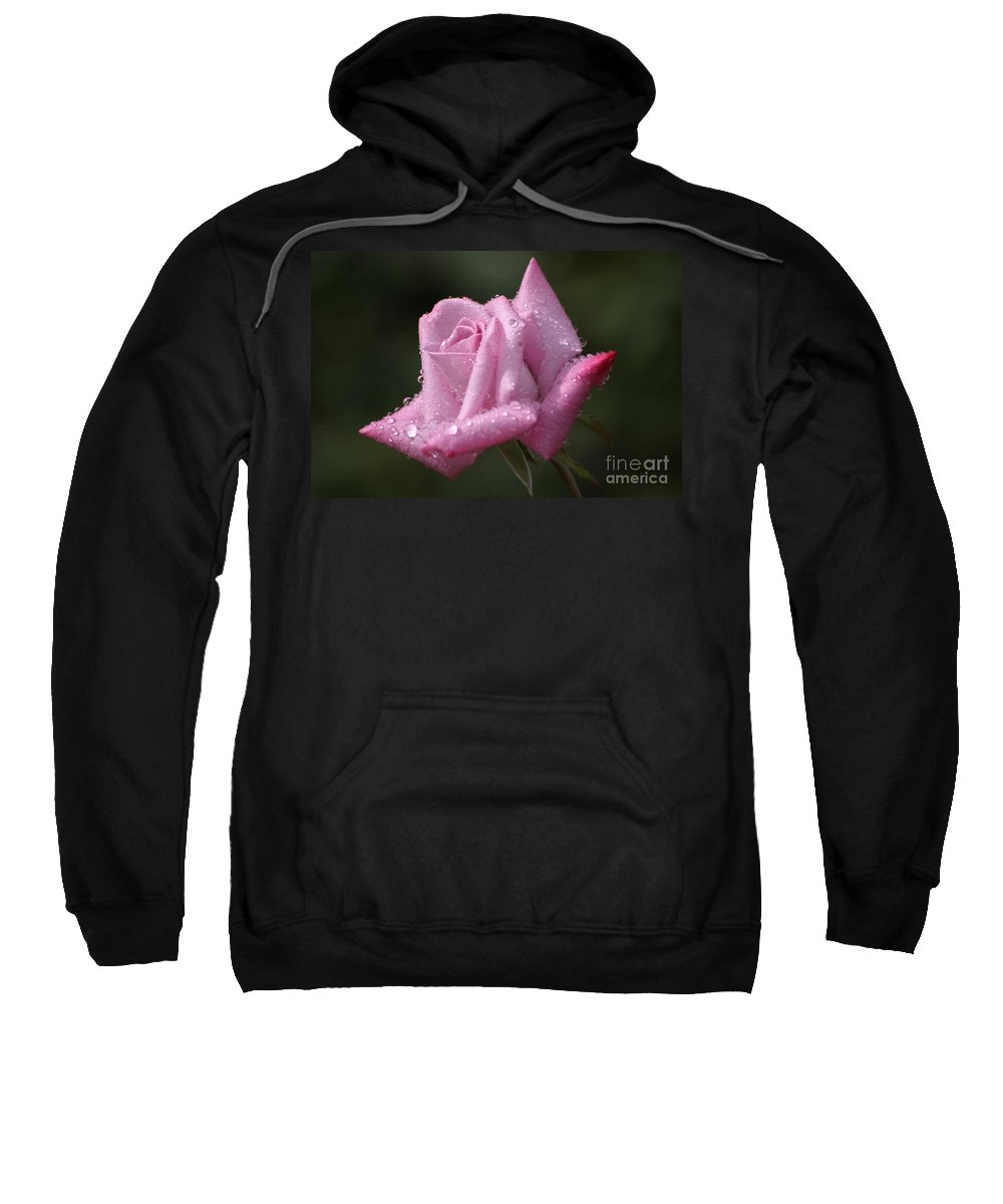 Rose Sweatshirt featuring the photograph Summer Shower by Living Color Photography Lorraine Lynch