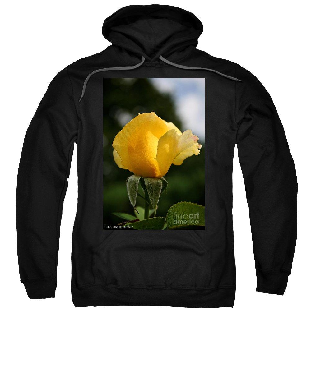 Plant Sweatshirt featuring the photograph Sunrise Rosebud by Susan Herber