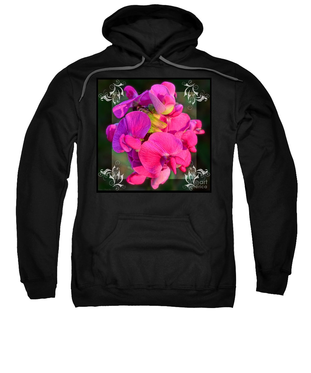 Nature Sweatshirt featuring the photograph Sweet Pea Pop Out Square by Debbie Portwood