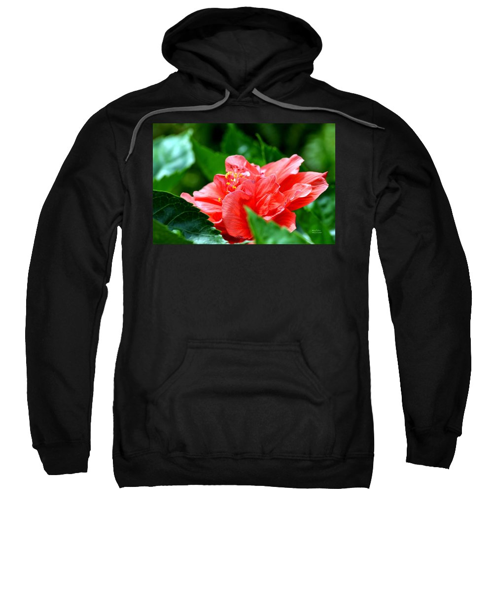 Sweetheart Sweatshirt featuring the photograph Sweetheart Red by Maria Urso