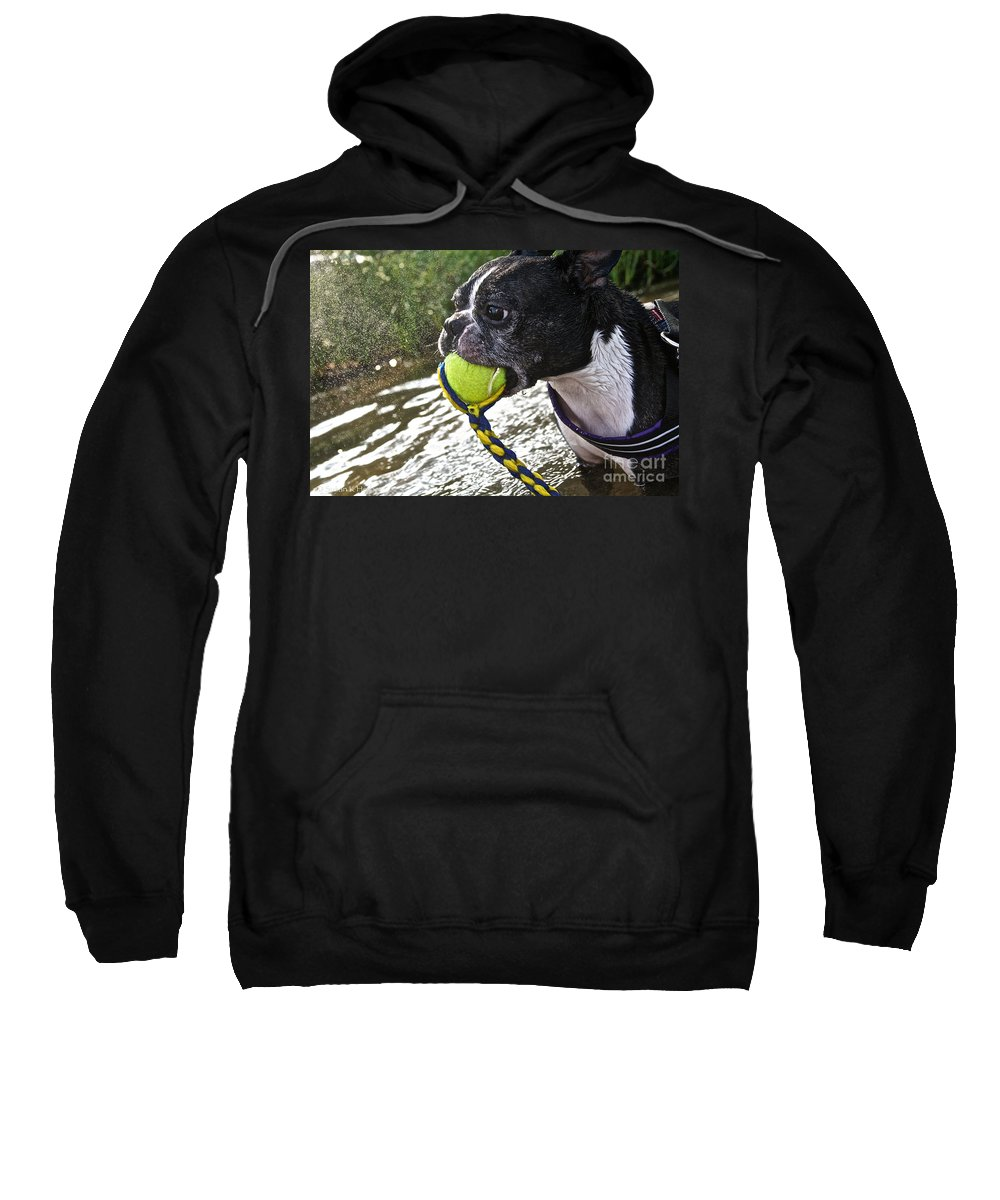 Outdoors Sweatshirt featuring the photograph Tennis Ball Mist by Susan Herber