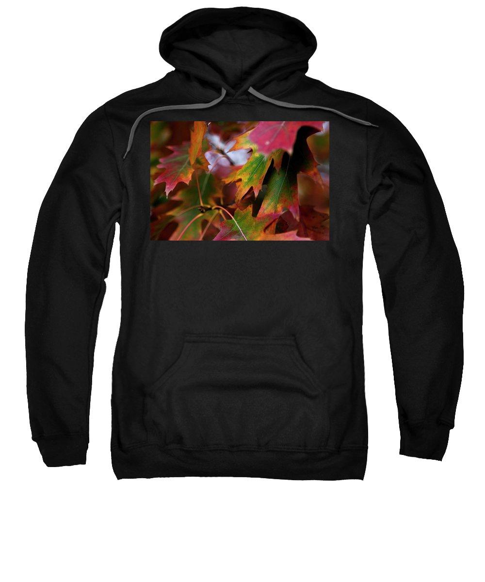 New York City Sweatshirt featuring the photograph The Autumn Leaves by Lorraine Devon Wilke