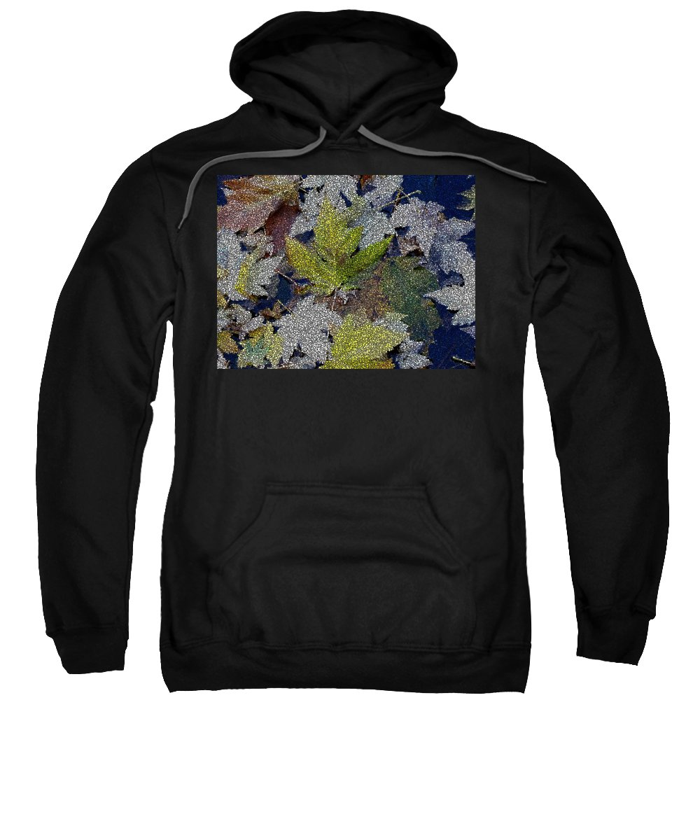 Fall Sweatshirt featuring the digital art The Color Of Fall by Tim Allen