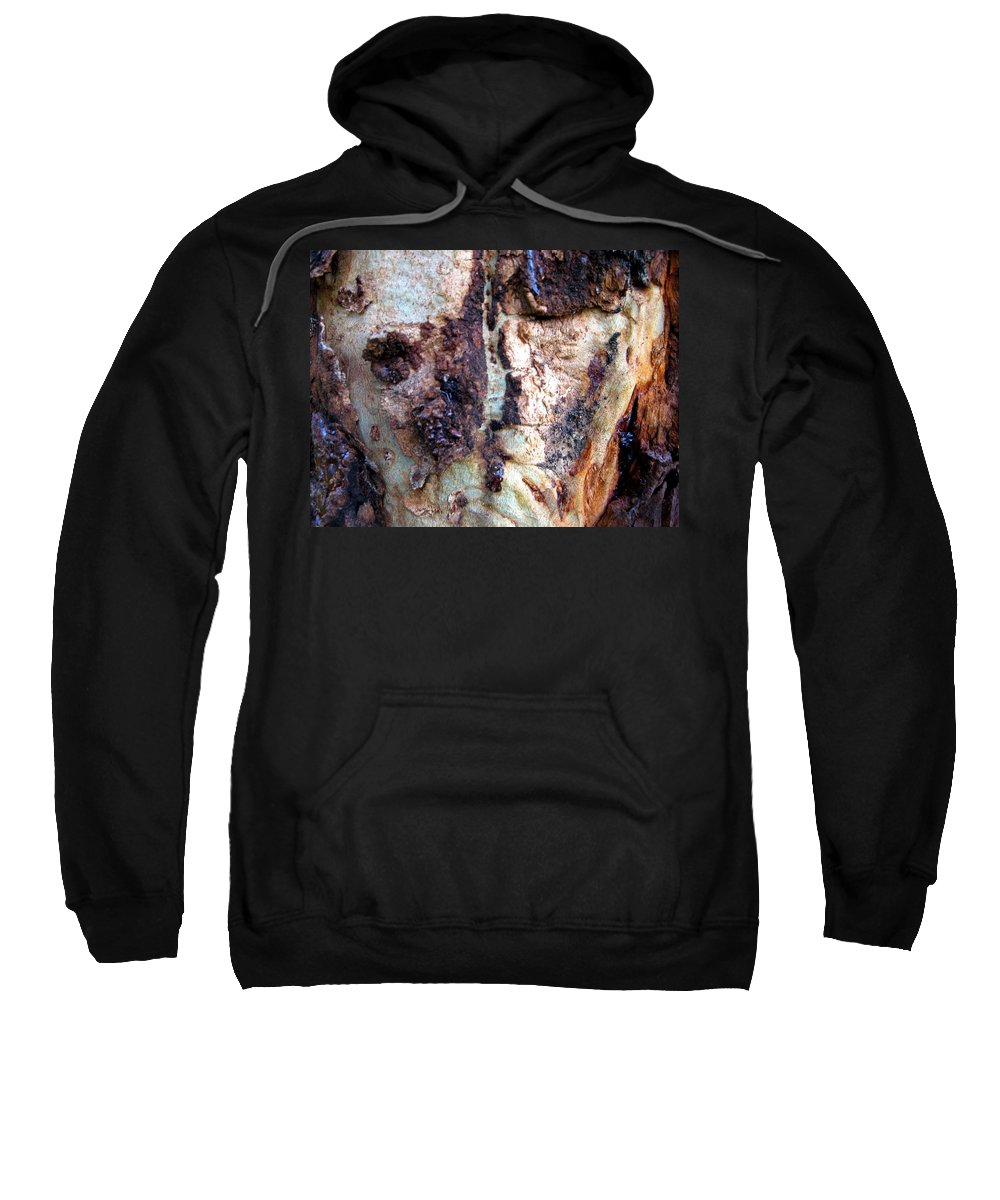 Trees Sweatshirt featuring the photograph The Elephant Tree by Robert Margetts