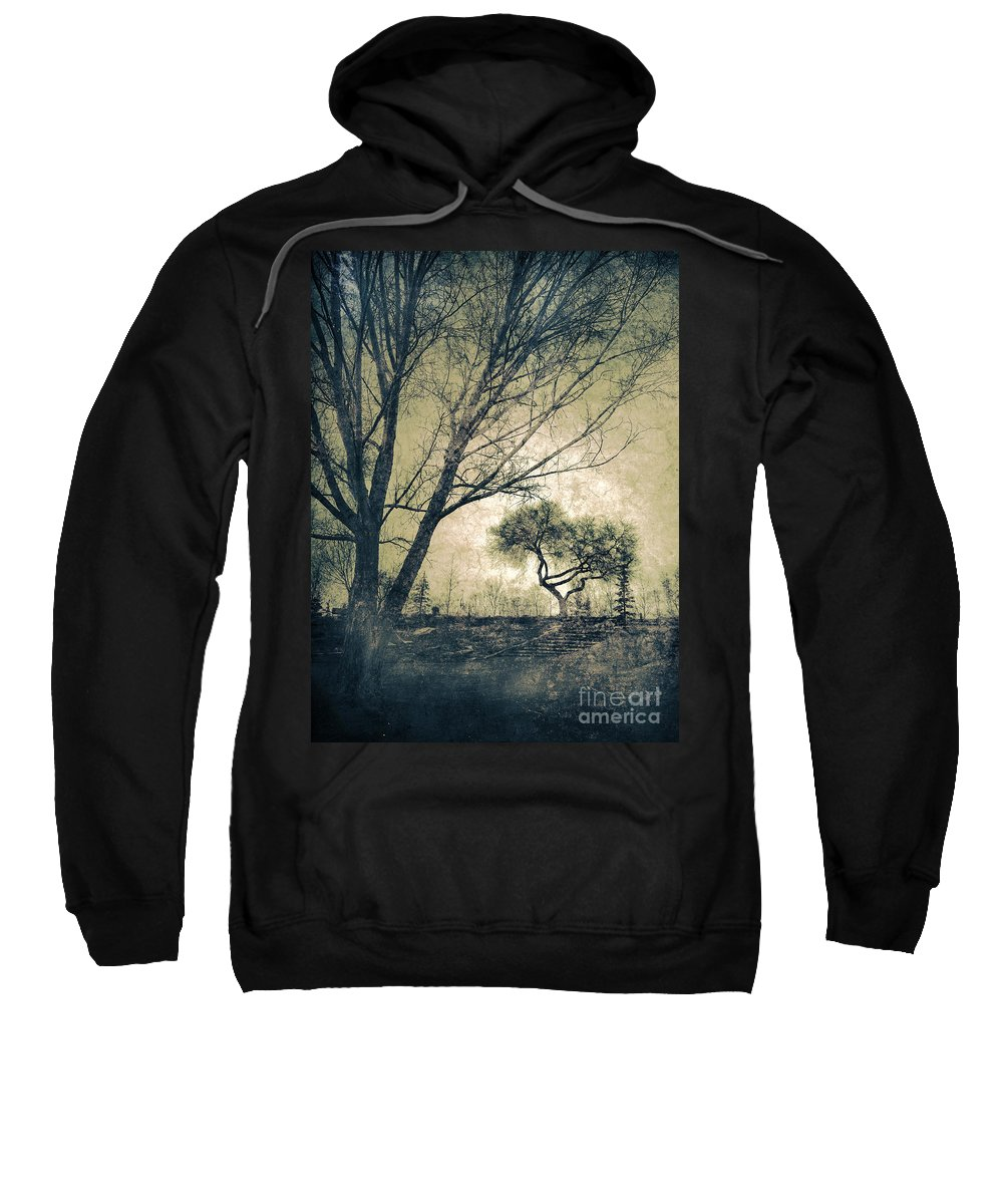 Tree Sweatshirt featuring the photograph The Forgetting Tree by Tara Turner