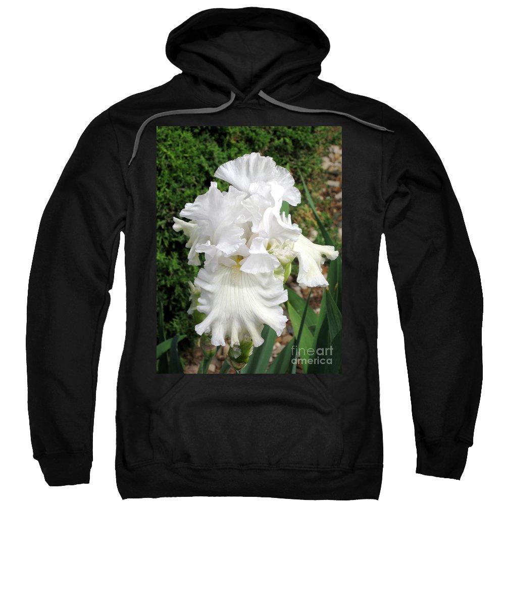 Greenery Sweatshirt featuring the photograph The White Iris by Phyllis Kaltenbach