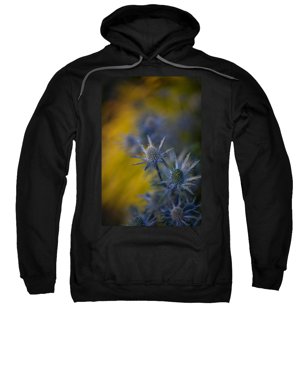 Flower Sweatshirt featuring the photograph Thistles Motion by Mike Reid