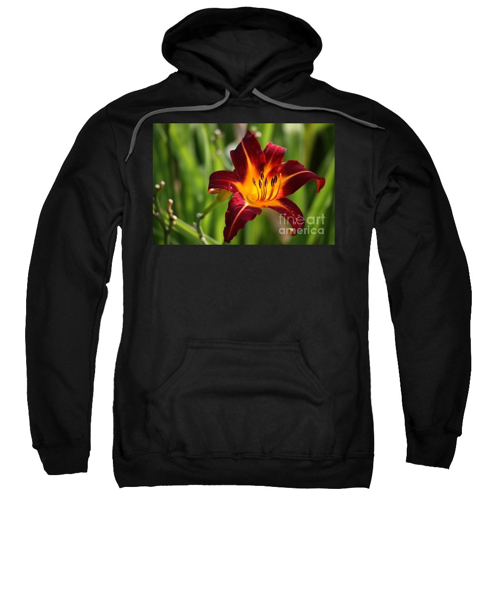 Tiger Lily Sweatshirt featuring the photograph Tiger Lily0275 by Gary Gingrich Galleries