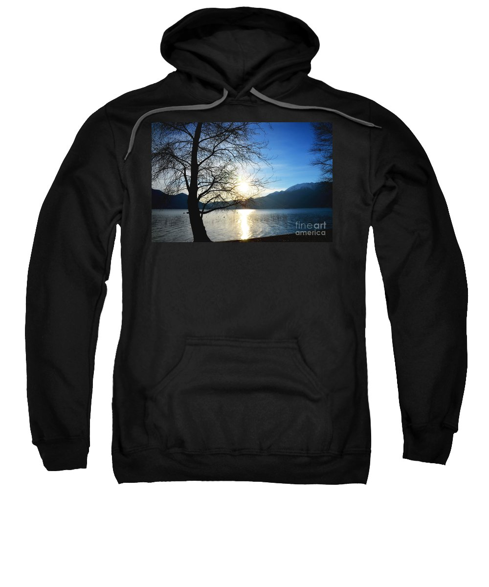 Tree Sweatshirt featuring the photograph Tree And Lake by Mats Silvan