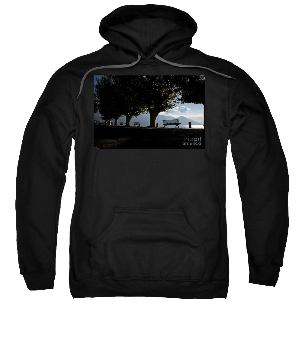 Trees Sweatshirt featuring the photograph Trees And Benches by Mats Silvan