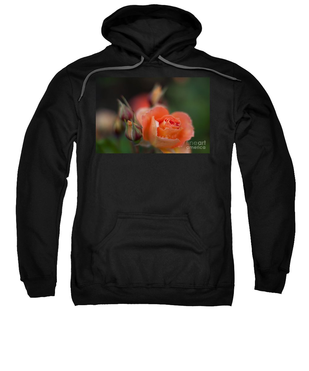 Flower Sweatshirt featuring the photograph Tropical Orange by Mike Reid