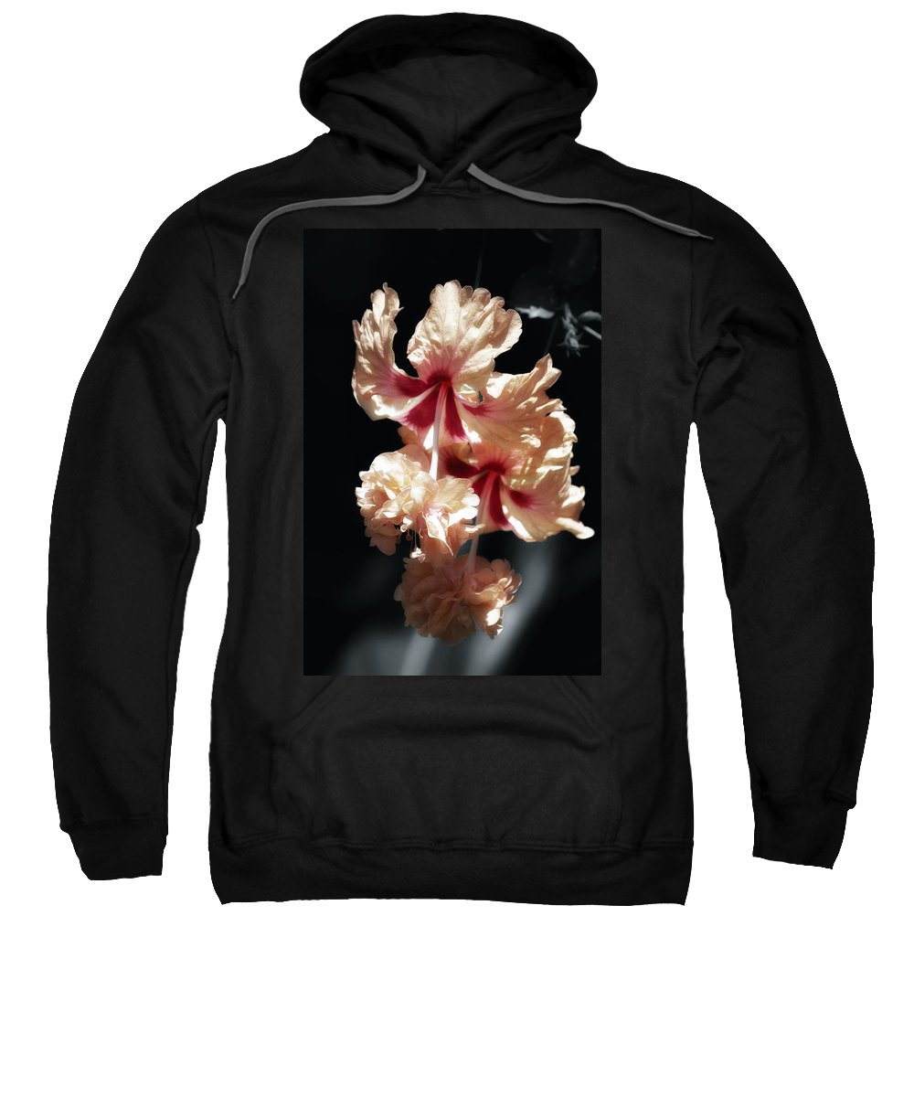 Digitally Hand Colored Sweatshirt featuring the photograph Twin Beauty Hibiscus by Linda Dunn
