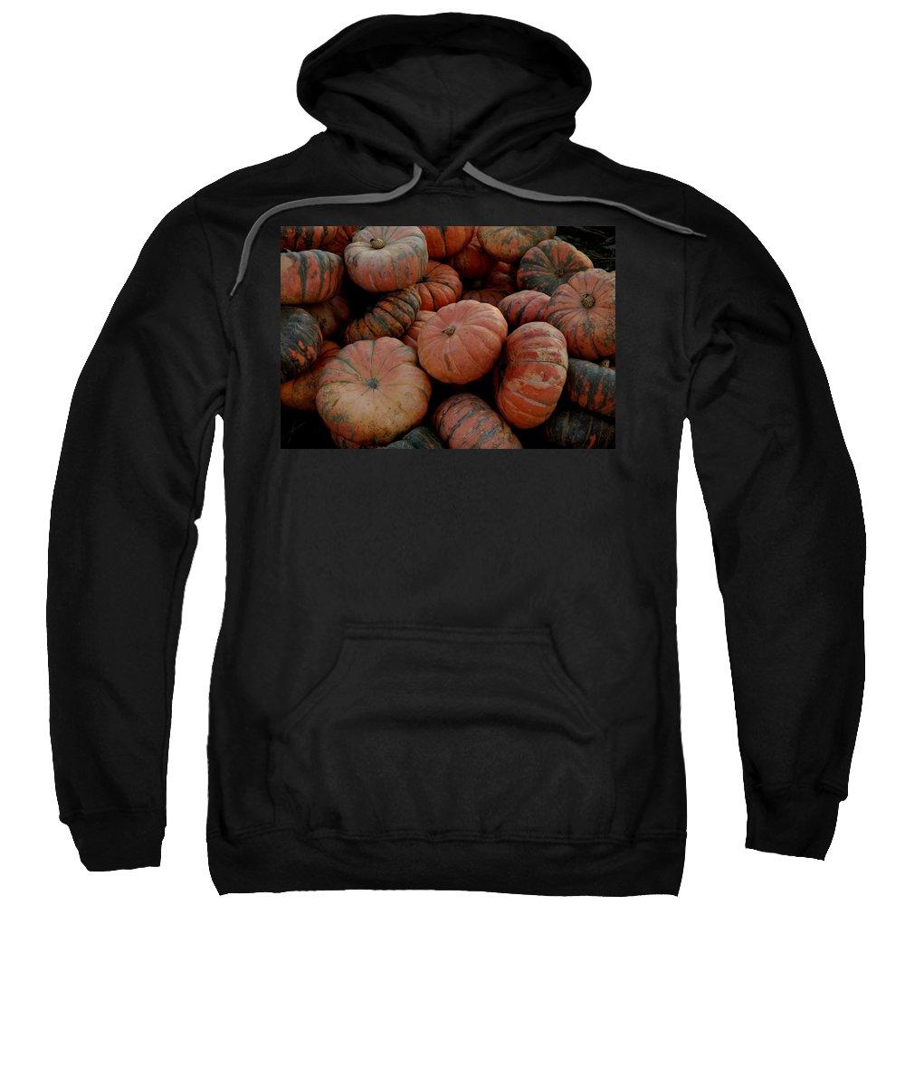 Usa Sweatshirt featuring the photograph Varied Pumpkins by LeeAnn McLaneGoetz McLaneGoetzStudioLLCcom