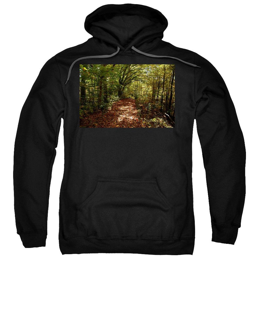 Usa Sweatshirt featuring the photograph Walk In The Woods by LeeAnn McLaneGoetz McLaneGoetzStudioLLCcom