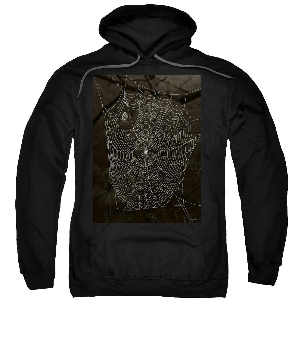 Arachnid Sweatshirt featuring the photograph Web Master by Ron Jones