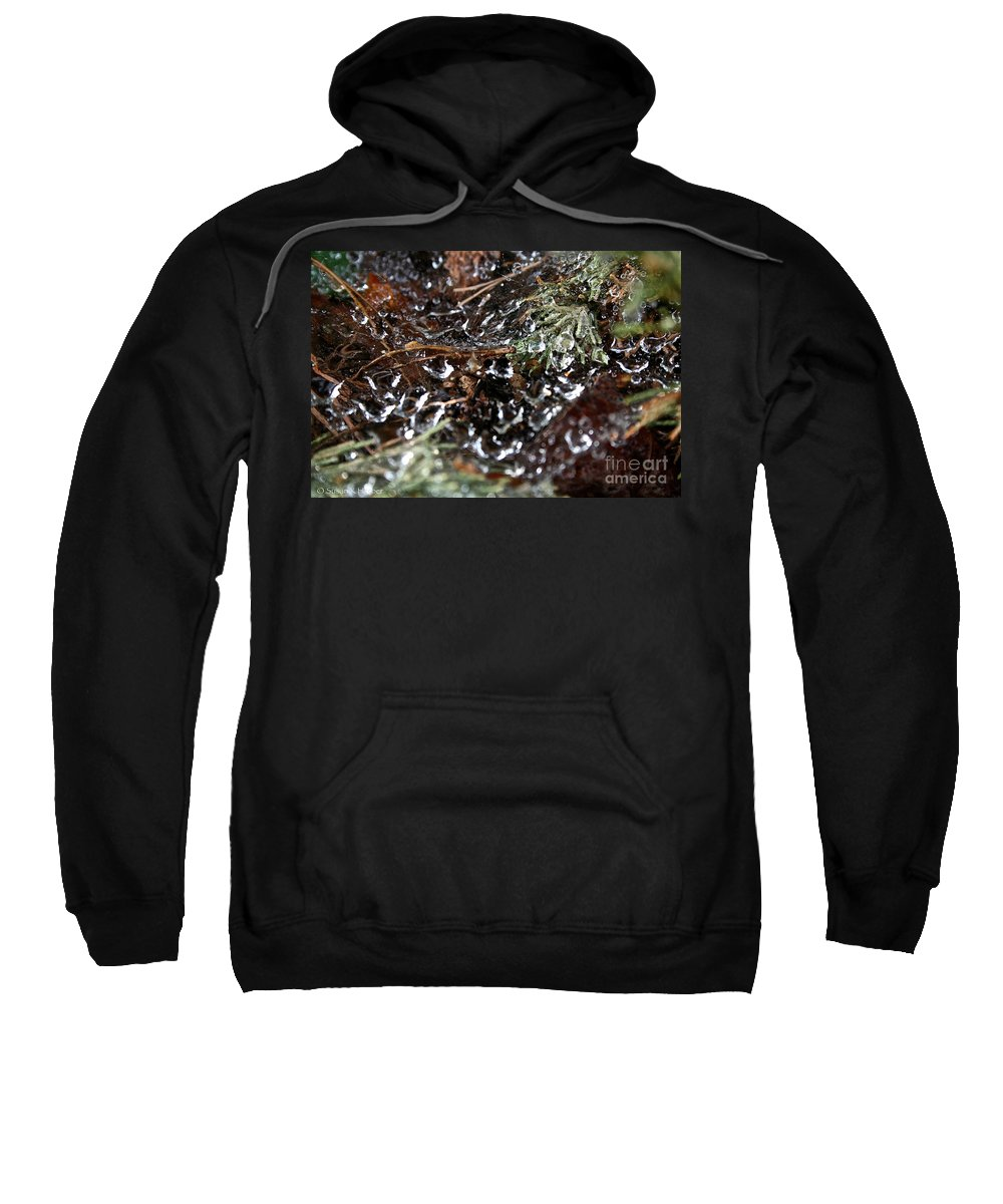 Spider Sweatshirt featuring the photograph Wet Web by Susan Herber