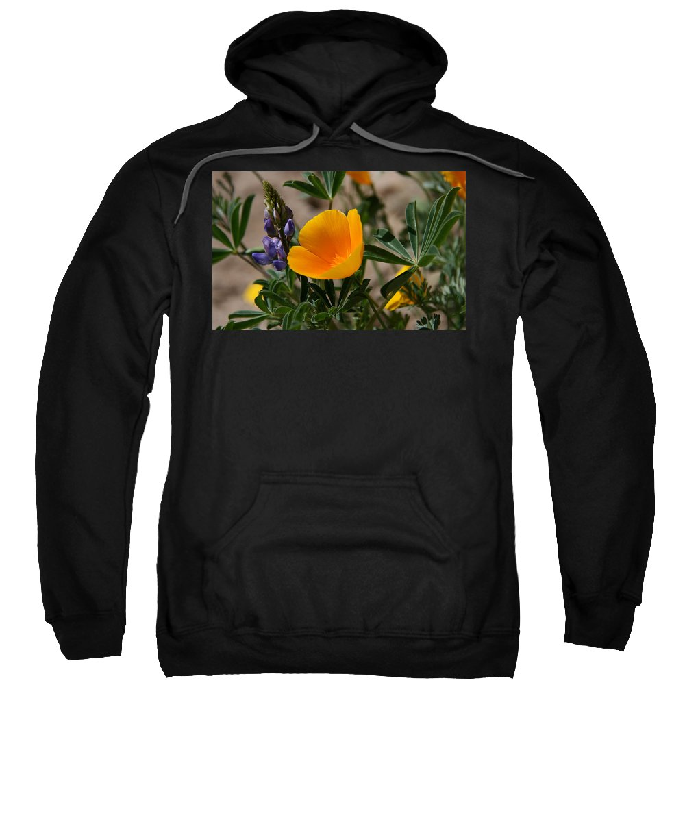 Poppy Sweatshirt featuring the photograph Wild Poppy And Lupine by Elizabeth Rose