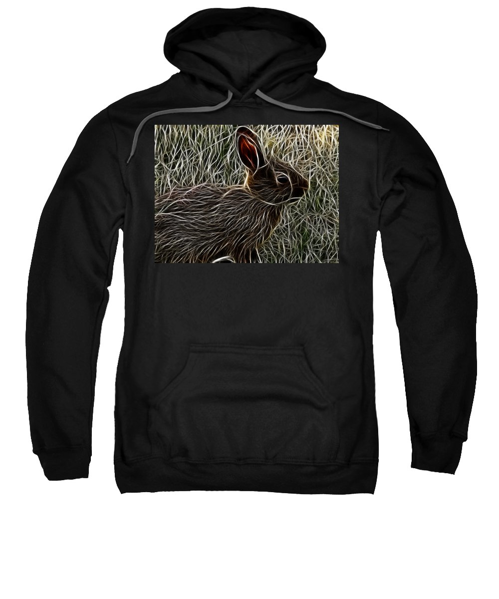 Wild Sweatshirt featuring the digital art Wild Rabbit by Maciek Froncisz