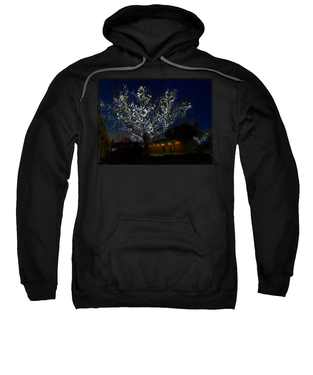 Winter Sweatshirt featuring the photograph Winter Lights by Steve Taylor