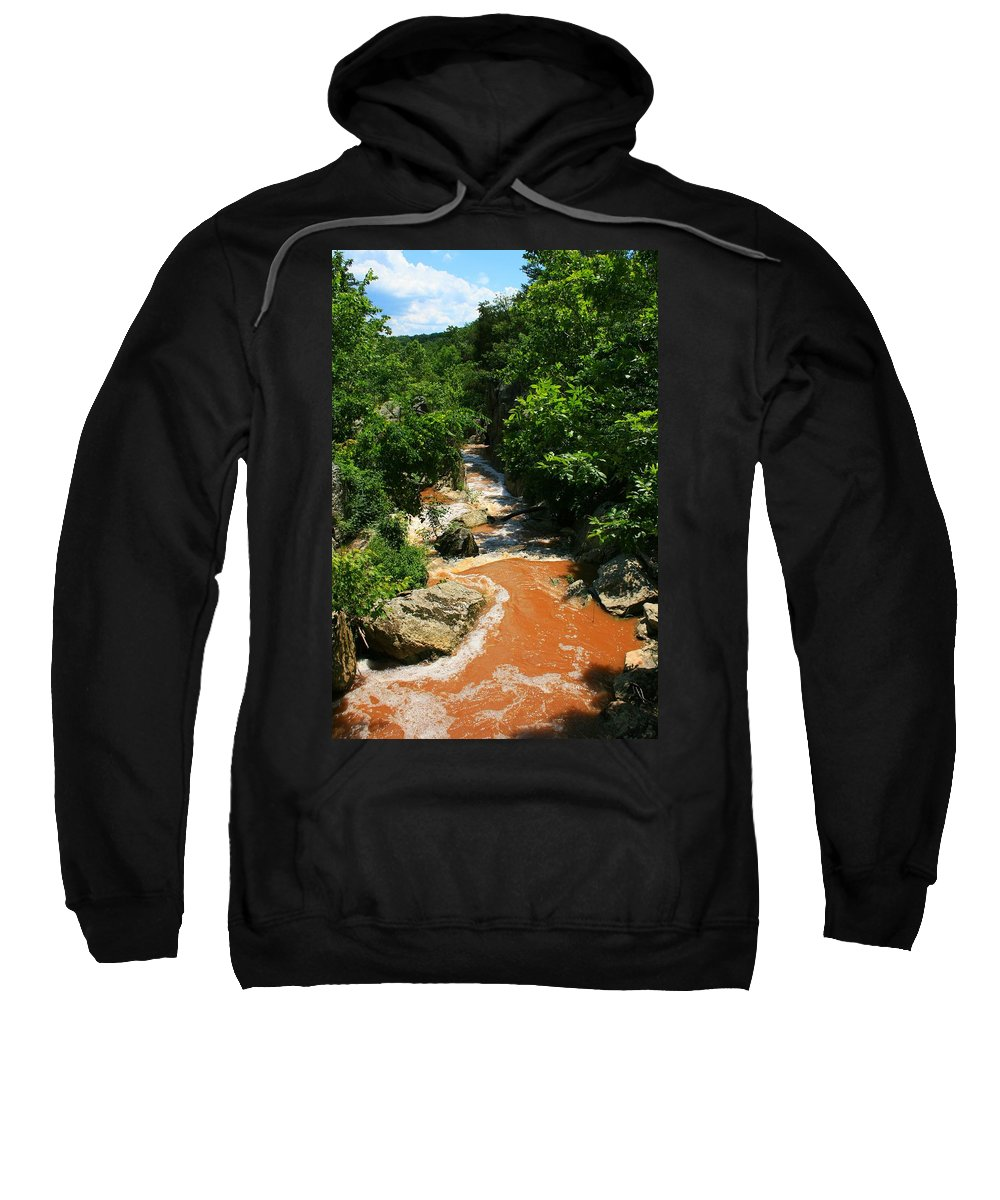 Nature Sweatshirt featuring the photograph Wonka's Wonder by Phil Cappiali Jr