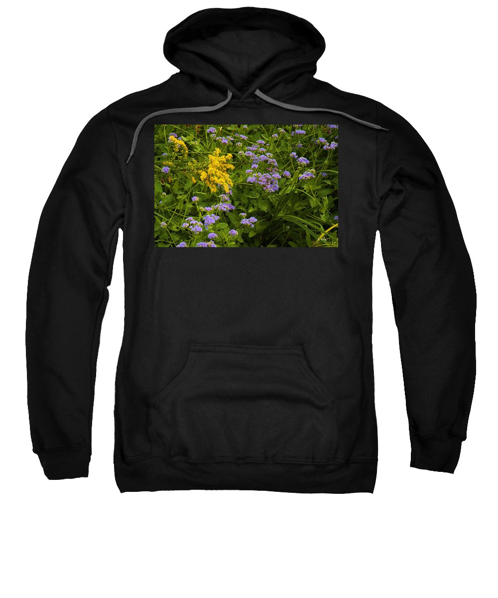 Roena King Sweatshirt featuring the photograph Yellow And Violet Flowers by Roena King