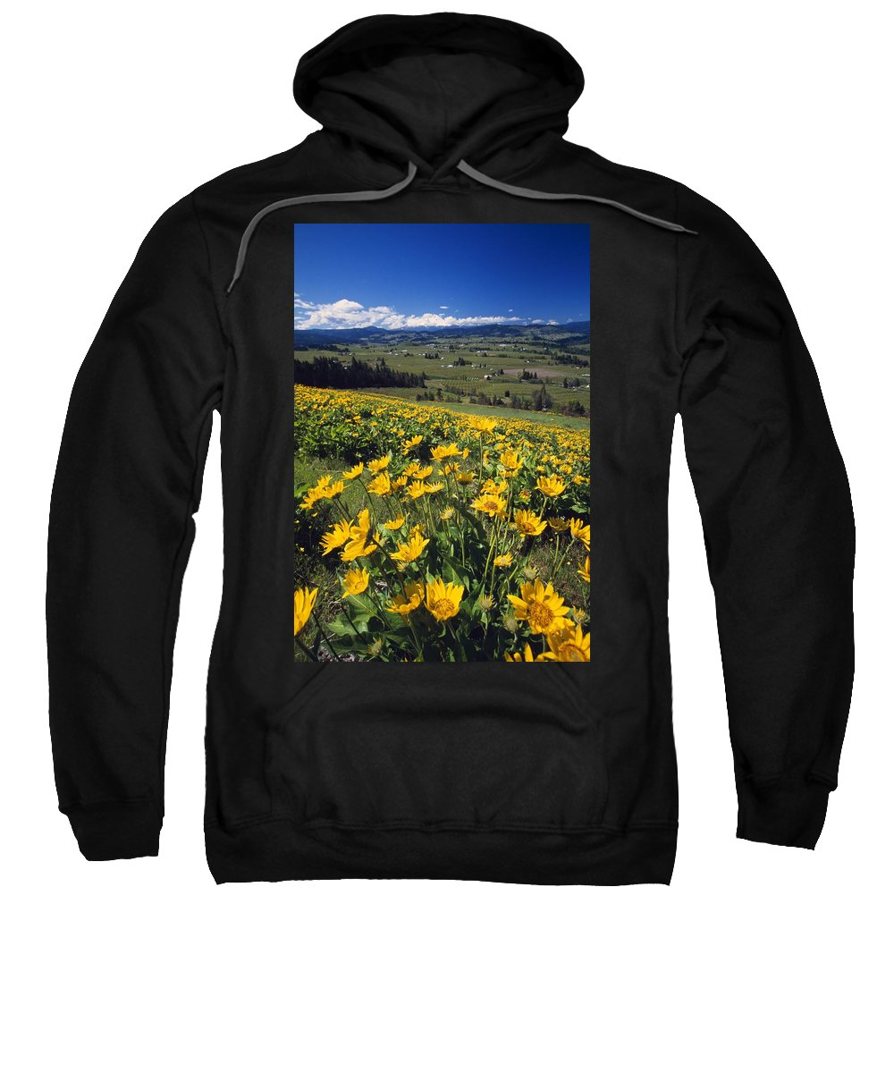 Outdoors Sweatshirt featuring the photograph Yellow Flowers Blooming, Hood River by Natural Selection Craig Tuttle