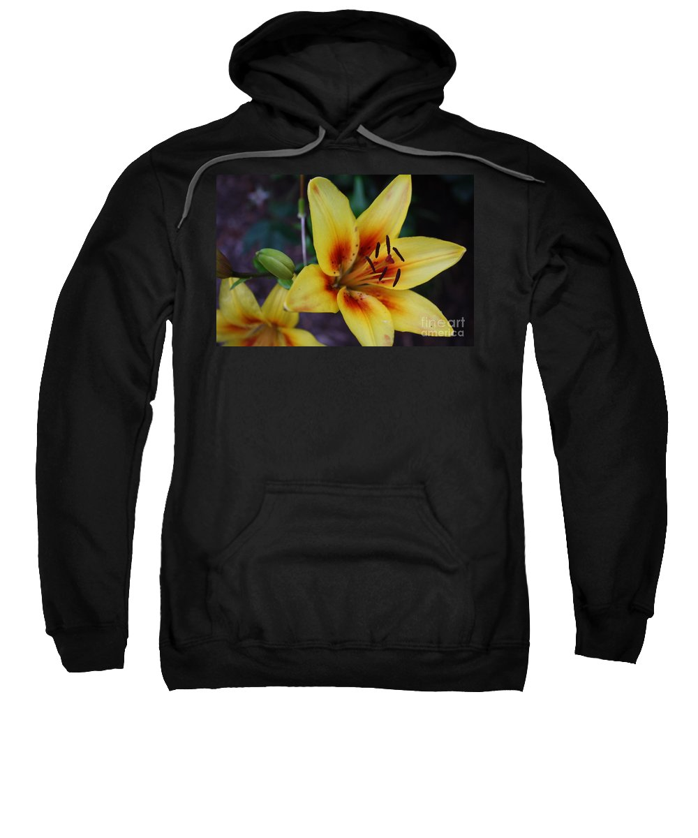 Flowers Sweatshirt featuring the photograph Yellow Tiger Lily by Dora Sofia Caputo Photographic Design and Fine Art