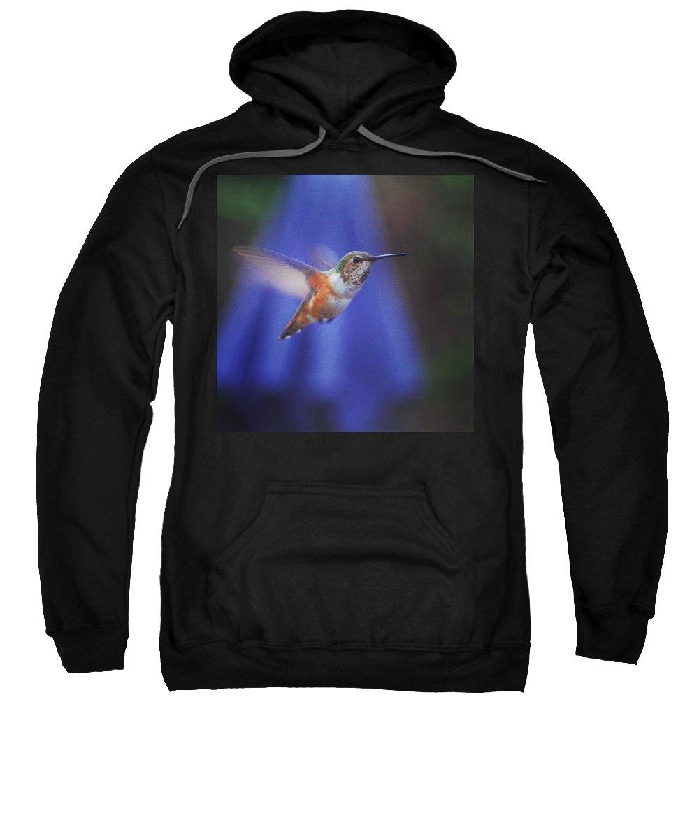 Hummingbird Sweatshirt featuring the photograph Hummingbird In Flight by Kat J
