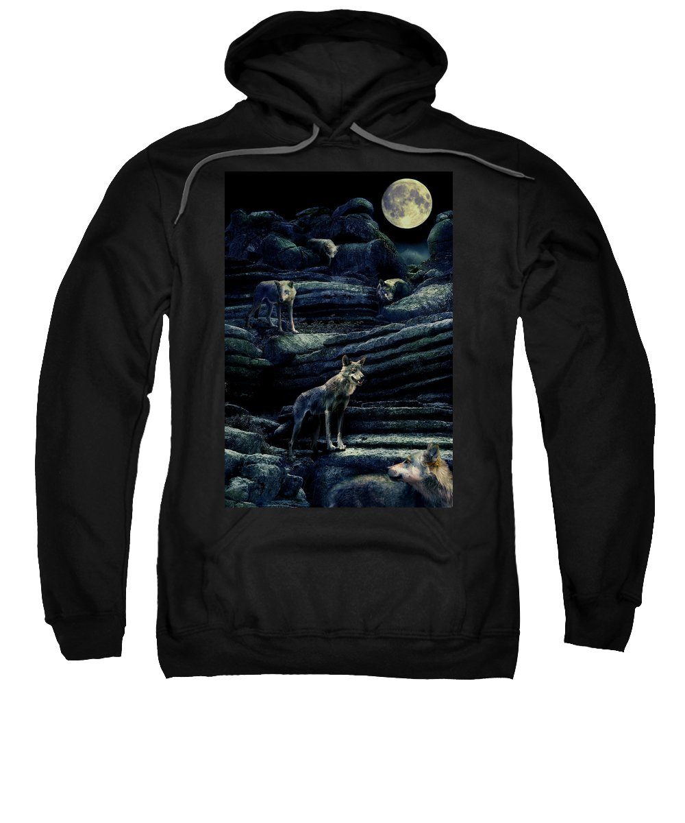 Wolf Sweatshirt featuring the photograph Moonlit Wolf Pack by Mal Bray