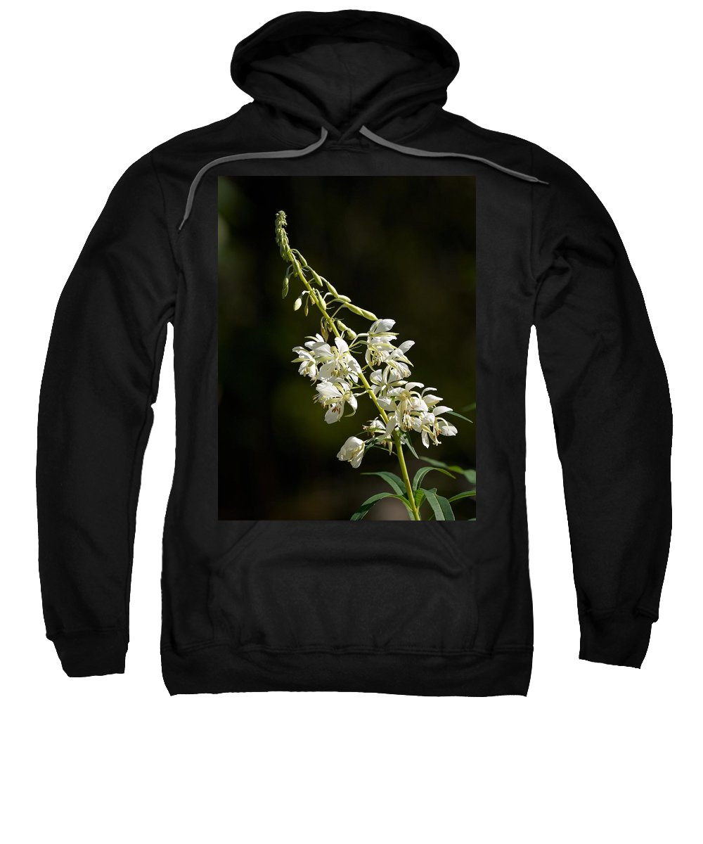 Lehtokukka Sweatshirt featuring the photograph White Fireweed by Jouko Lehto