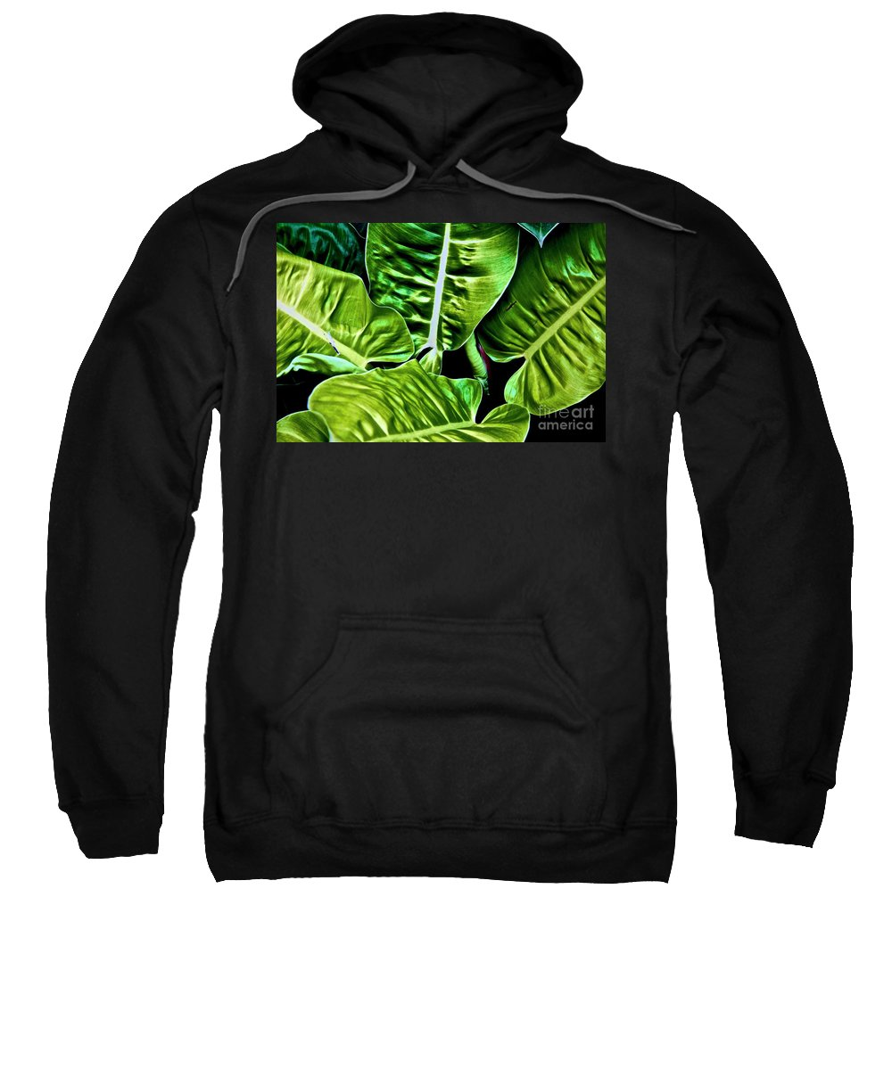 Canon T3i Eos Rebel Sweatshirt featuring the photograph 01142017087 by Debbie L Foreman