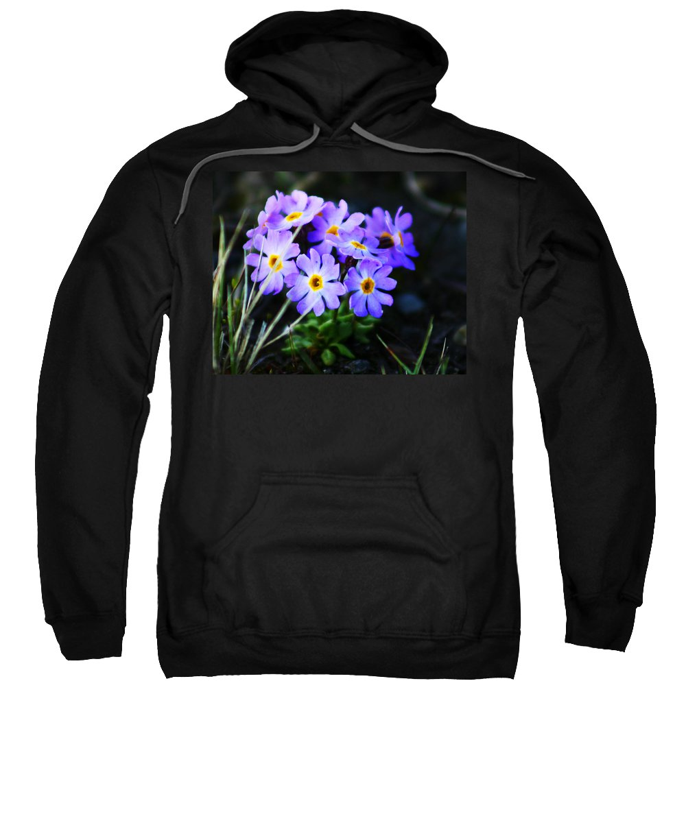Flowers Sweatshirt featuring the photograph Alaskan Wild Flowers by Anthony Jones