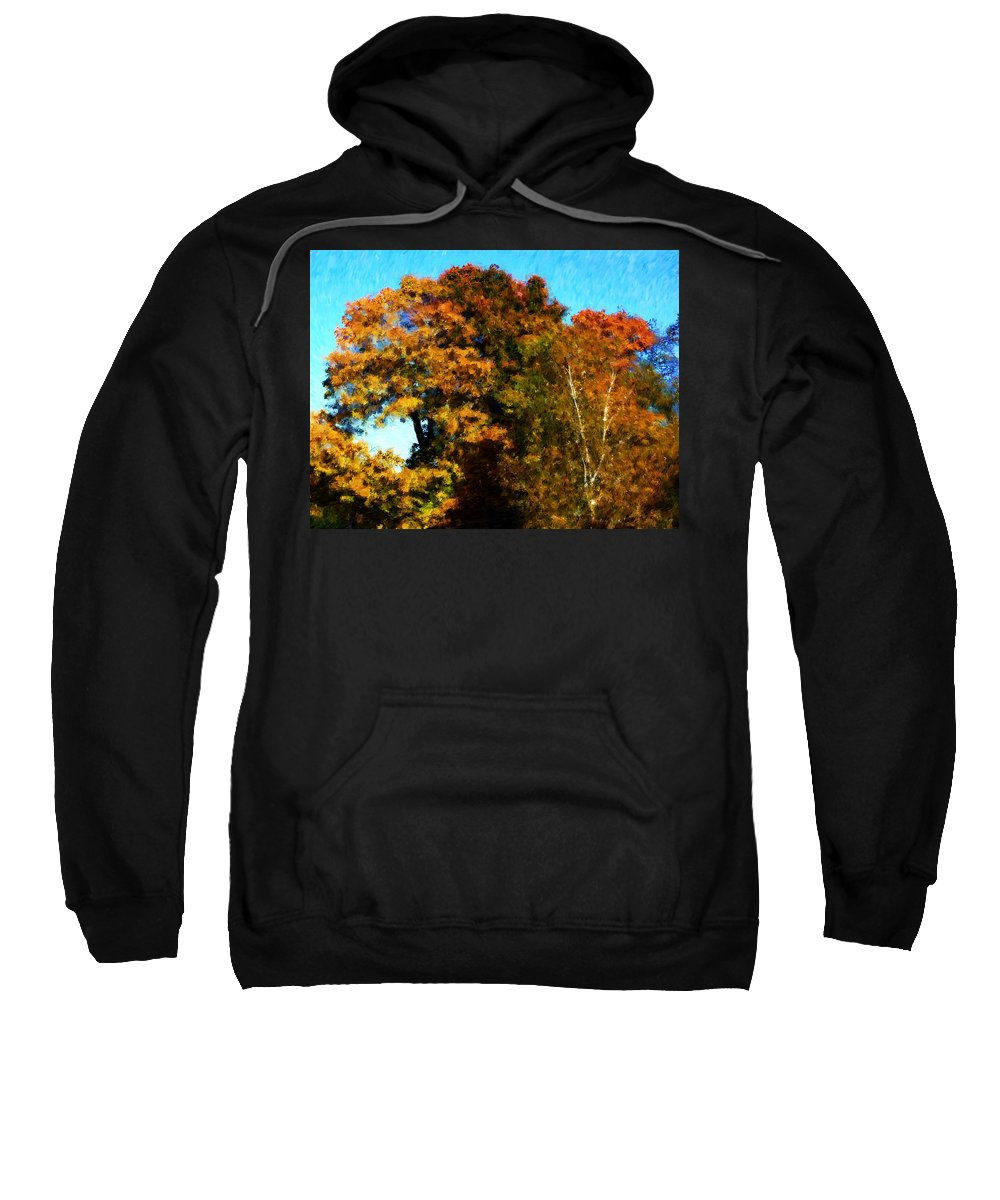 Digital Photography Sweatshirt featuring the photograph Autumn Leaves by David Lane