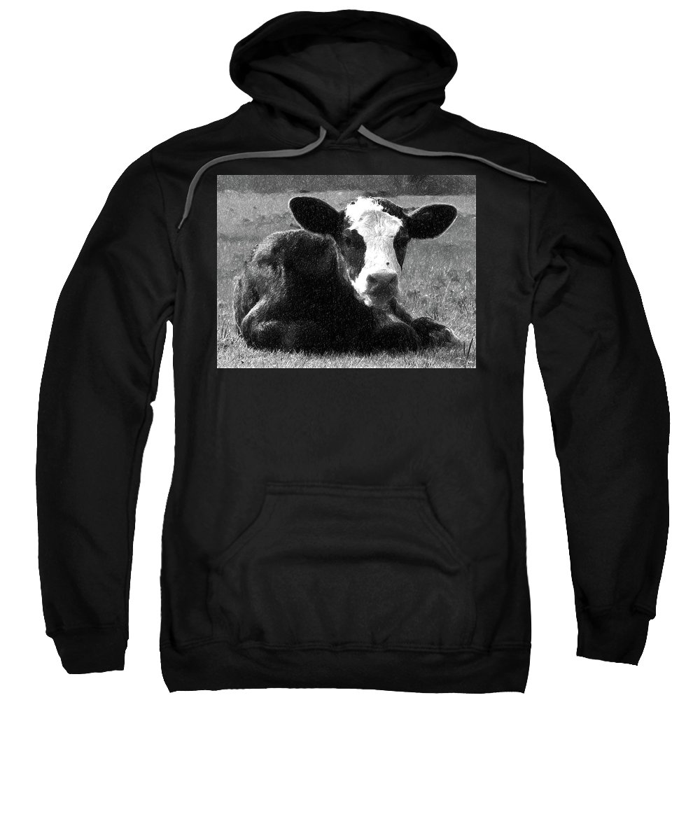 Calf Sweatshirt featuring the digital art Calf by Nadezhda Zhuravleva
