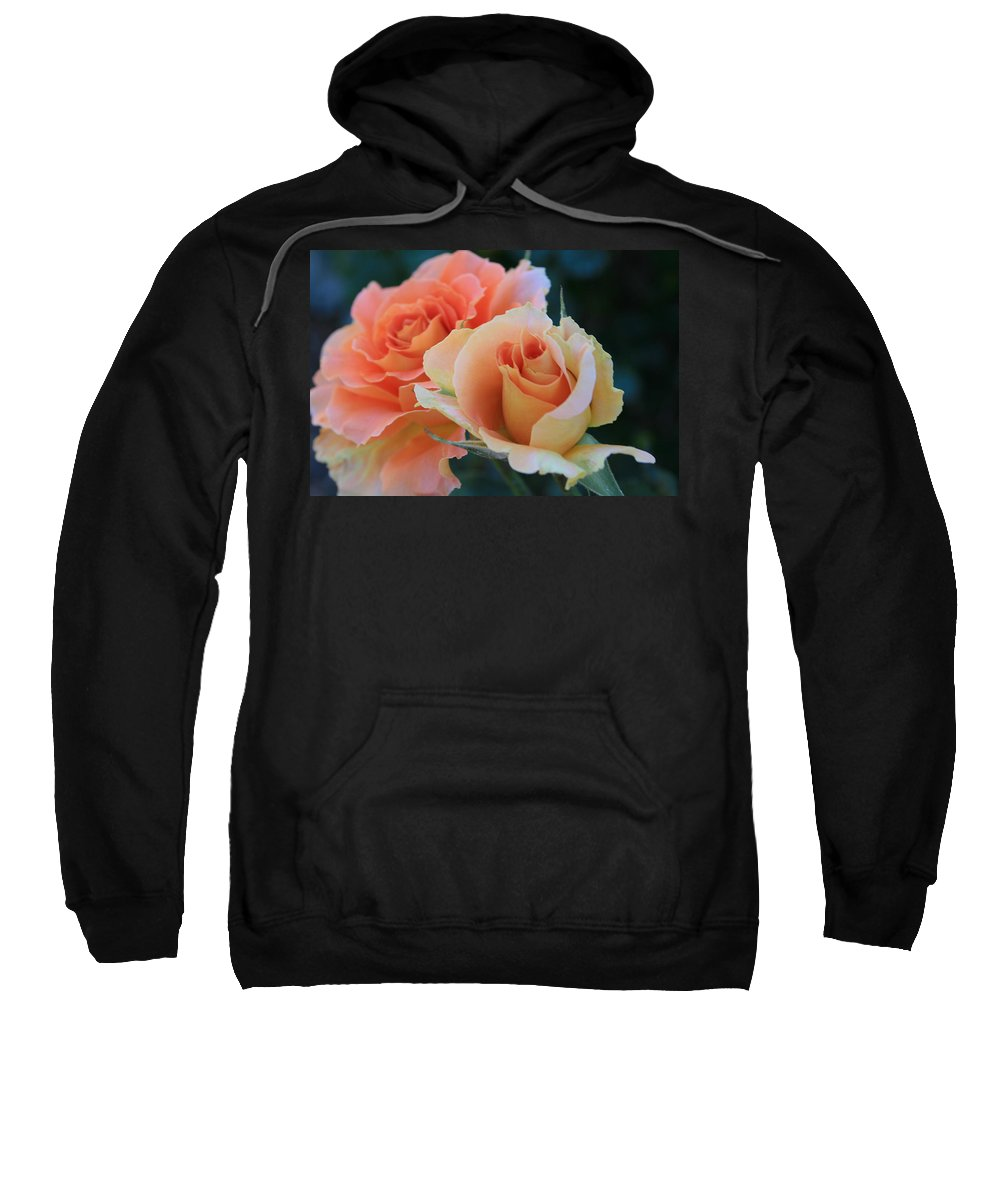 Rose Sweatshirt featuring the photograph Jacob by Marna Edwards Flavell